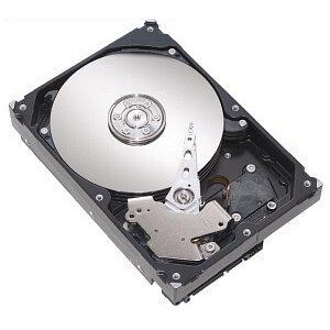 Hard Disk calculator SATA 160GB
